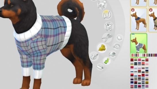Burberry Large Dog Sweaters Collection 狗狗衣服