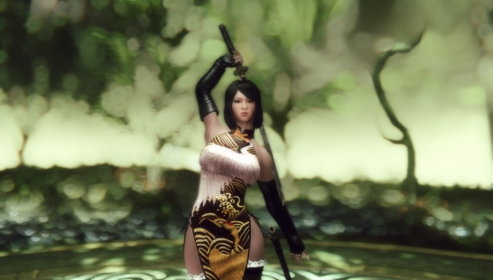 Exclusive Asian Assassin Healer Companions  独家亚洲刺客治疗伴侣