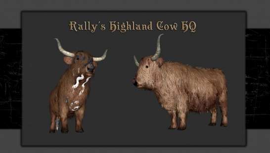 Rally's Highland Cow HQ 牛