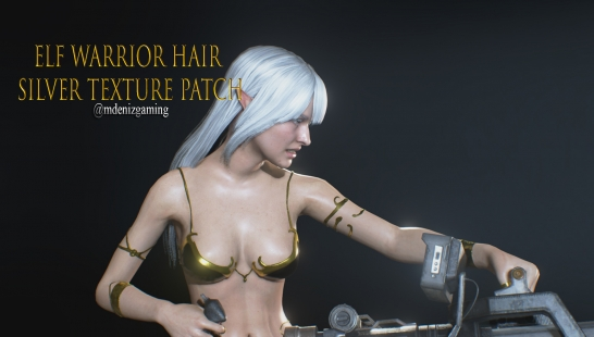 Elf Warrior Hair Silver Texture Patch附件